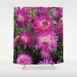 Pretty in Pink Dahlia 2 Shower Curtain
