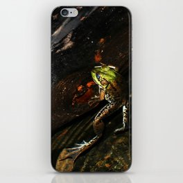 Frog on a Log iPhone Skin
