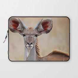 Young Kudu, Africa wildlife Laptop Sleeve