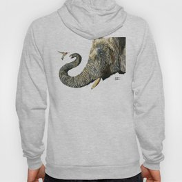 Elephant Cyril And Hummingbird Ayre Hoody