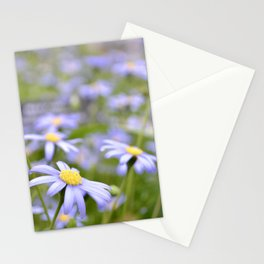 Some more daisies Stationery Cards
