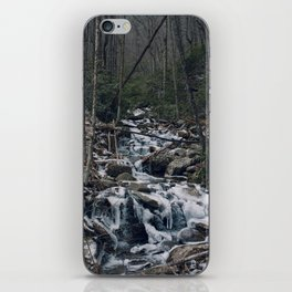 Frozen Stream From Mountain High iPhone Skin