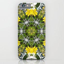 Kaleidoscope of showy St Johns Wort iPhone Case