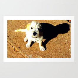 Just A Pup Looking Up Art Print