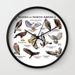 Hawks of North America Wall Clock
