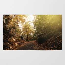 Photography - Rural Road in Autumn Rug