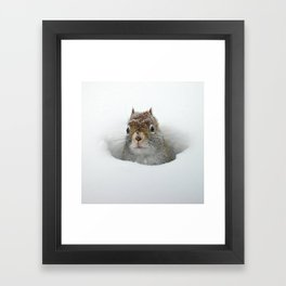 Cute Pop-up Squirrel in the Snow Framed Art Print