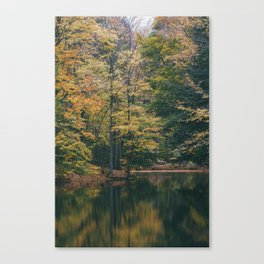 Pond Painted with Autumn Canvas Print