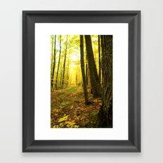 Autumnal Pathway Framed Art Print