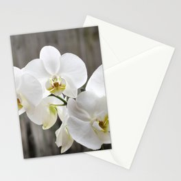 Pure Orchid Stationery Cards