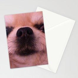 Mugshot Stationery Cards