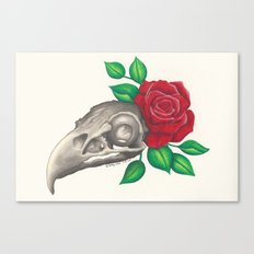 Vulture Skull Canvas Print