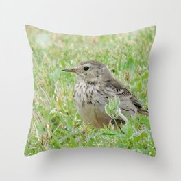 Pipit on the Lawn Throw Pillow