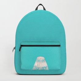 Aqua Penguin Backpack