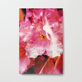 Flower Nymphs Metal Print