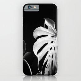 Monstera in Winter #1 iPhone Case