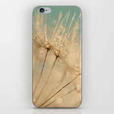 dandelion gold and mint iPhone & iPod Skin