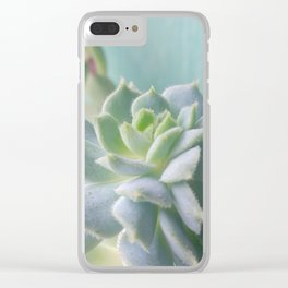 Window Sill Succulent Clear iPhone Case