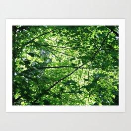 Green No.1 Art Print