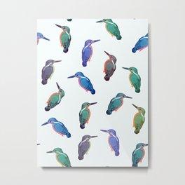 Colored kingfishers Metal Print