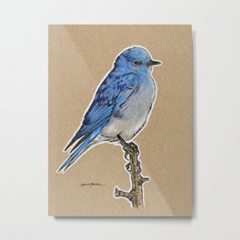 State Bird Series: Nevada - Mountain Bluebird Metal Print