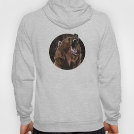 I can't bear these triangles! Hoody