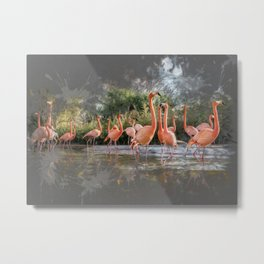 Flamingos on the lake Metal Print