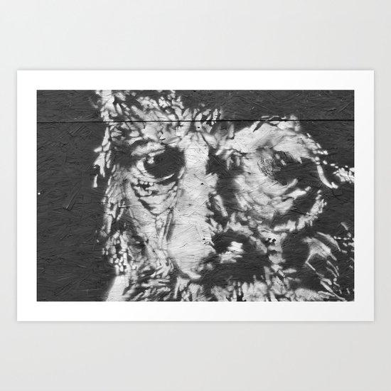 eyes of wisdom Art Print
