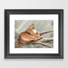 Don Corle-Cougar Framed Art Print