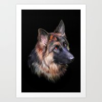 german shepherd Art Prints featuring German Shepherd by Julie Hoddinott