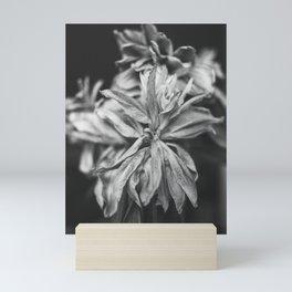 Wilted Lily Mini Art Print