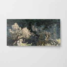 Old Olive Tree and Rocks at the Edge of a Cliff | Andalusia Nature Photography | Spain Wanderlust Vacation Metal Print