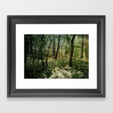 Woodland trees Framed Art Print