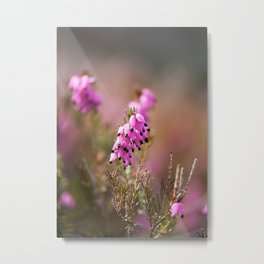 Heath Flowers Metal Print