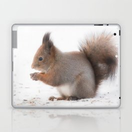 Squirrel And Lunch Pause Winter Scene #decor #society6 #buyart Laptop & iPad Skin