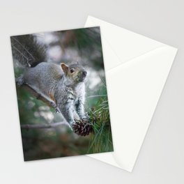 Stopping by Stationery Cards