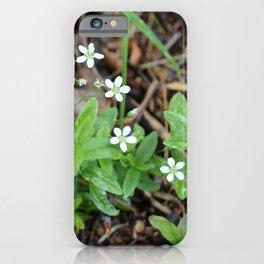 Many Mini Wildflowers iPhone Case