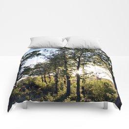 Light. Comforters