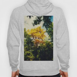 fall in Central Park Hoody