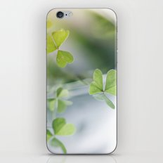 evergreen iPhone & iPod Skin