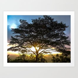 Sunrise Corcovado National Park, Costa Rica Art Print