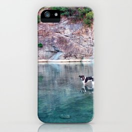Lagune dog iPhone Case
