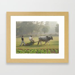 Morning Work Framed Art Print