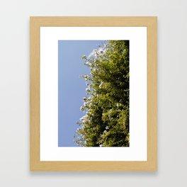 Flores y el Cielo Framed Art Print