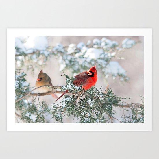 Remembering.... (Northern Cardinals) Art Print