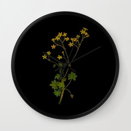 Cineraria Geifolia Mary Delany Delicate Paper Flower Collage Black Background Floral Botanical Wall Clock