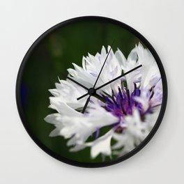 White cornflower Wall Clock