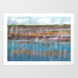 Vacant Land, Everglades, II Art Print
