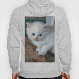 White Kitten Hoody