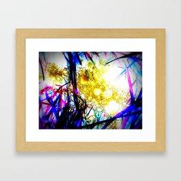 Raindrops in the Grass Framed Art Print